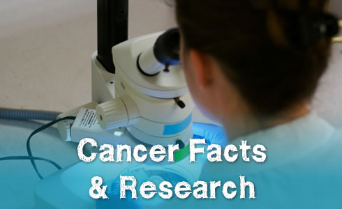 Cancer Facts & Research